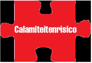 Puzzel_calamiteiten